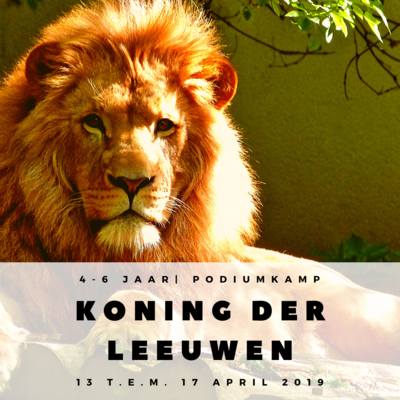'KONING DER LEEUWEN' | KAMP PODIUMINITIATIE  (2e en 3e kleuterklas)